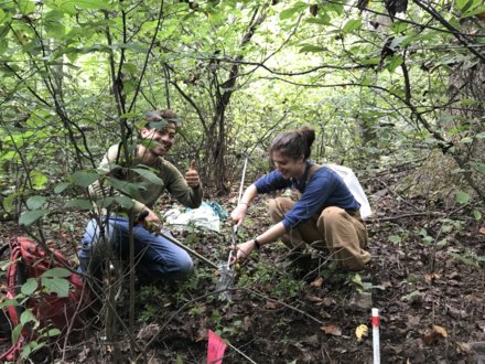Fall 2020 Macrosystems sampling--still happy although our plots are in a thick understory!